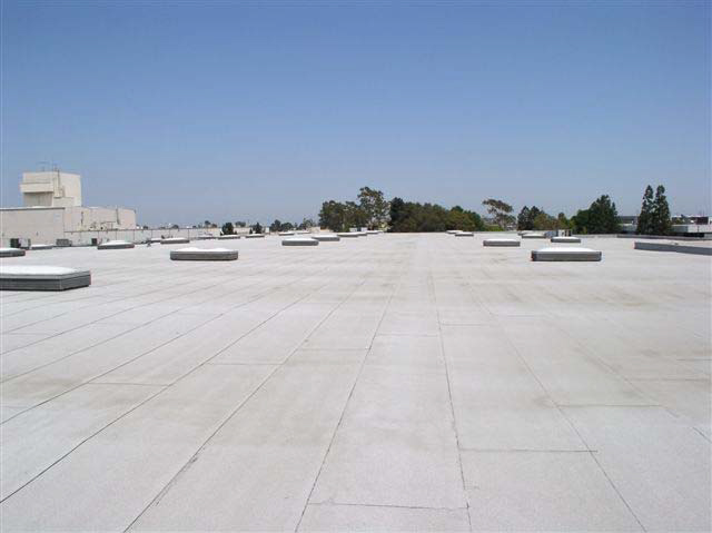 The white rooftop of a large building extends into the horizon. There are several skylights on the roof and trees in the distance.