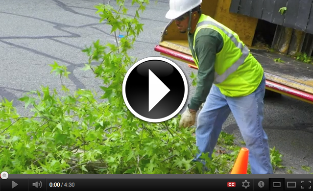 Preventing Wood Chipper Deaths Video
