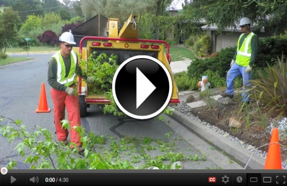 Preventing Woodchipper Deaths Video