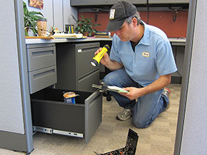An exterminator uses a flashlight to examine an office file cabinet for signs of bugs