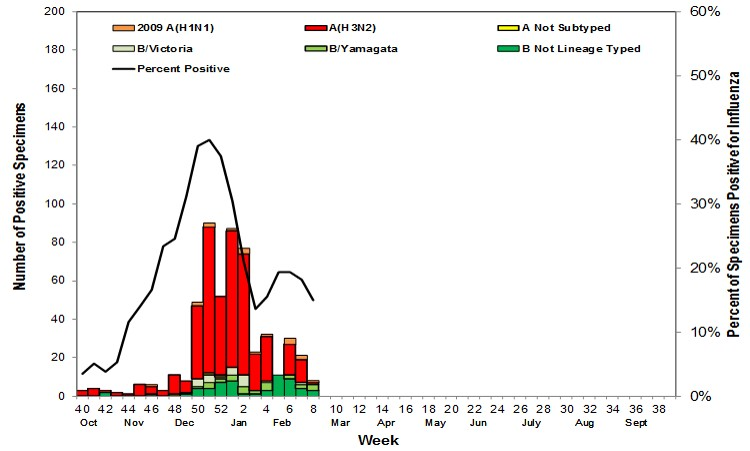 Flu Graph from Weekly Influenza Like Iness Report